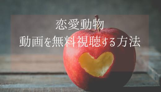 台湾ドラマ|恋愛動物の動画を無料視聴する方法【日本語字幕】