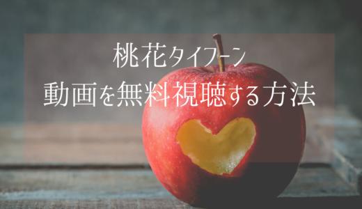 台湾ドラマ|桃花タイフーンの動画を無料で視聴する方法【日本語字幕】